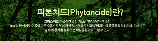 피톤치드(Phytoncide)란 그리스어로 식물이란 뜻의 'Phyton'과 '죽이다'란 뜻의  'cide'의 합성어로 수목이 다른 수목으로부터 자신을  보호하기 위해 분비하는 살균물질을 말하는데, 한마디로 숲 속의 공기를 정화하는 색심물질이라고 할 수 있다